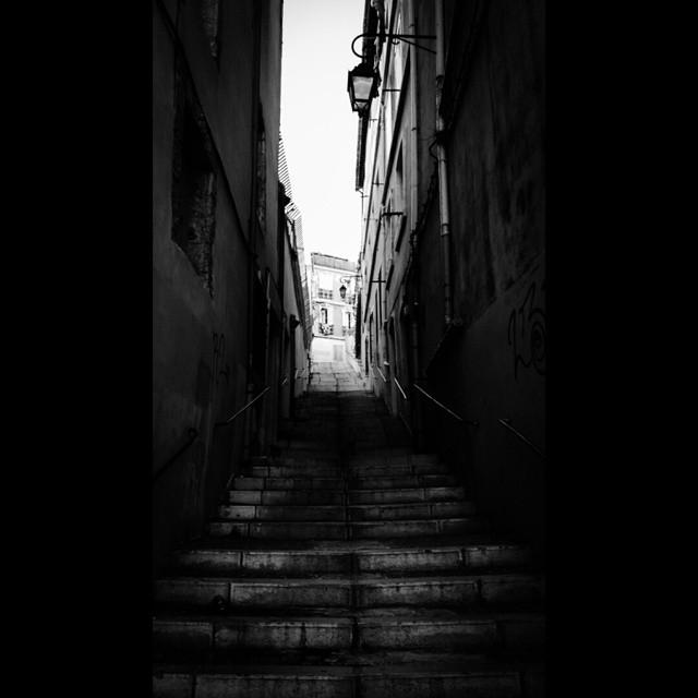 Sombre Panier